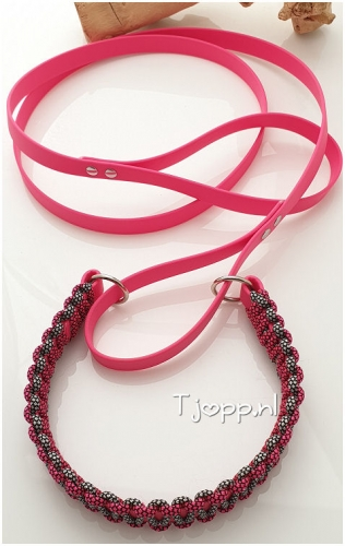 Halsband biothane en riem in 1.  Halsband is omweven met paracord